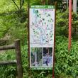 タマさんの養老公園の写真5