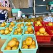長谷川果樹園へのマロンさんの投稿写真