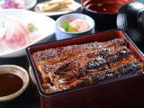 なまずや 県庁前店_ガッツリ食べよう! スタミナ料理用写真1