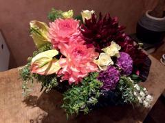プランタン|花と緑のある暮らし