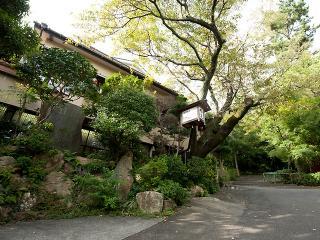 料理旅館 翠々園 植東の写真2