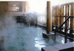 天然温泉 白川郷の湯の写真