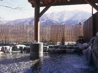 大白川温泉 しらみずの湯の写真