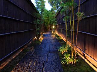 日本料理 稲穂の写真1