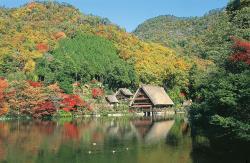 松尾池の写真