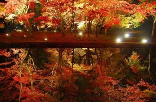 曽木公園の写真