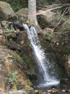 信長居館跡付近の滝の写真