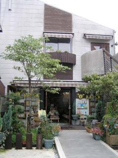 絵本と童話の店おおきな木の写真