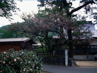 本覚寺の写真