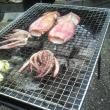 清水川コミュニティ水路へのポニョさんの投稿写真
