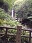 養老の滝へのマロンさんの投稿写真