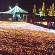 国営木曽三川公園センターの写真5(レッツなシニア)