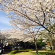 岐阜公園へのまなみさんの投稿写真