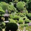 禅昌寺へのレッツなシニアさんの投稿写真