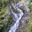 岩舟渓谷 萩の滝へのレッツなレポーターさんの投稿写真
