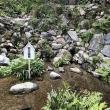 養老神社 菊水泉への瀬戸の人さんの投稿写真