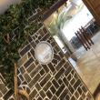 HACHINOSU CAFE 岐阜店へのえころんさんの投稿写真