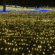 ヨゼさんの国営木曽三川公園センターの写真4
