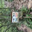 東坂ハイキングコースへのポニョさんの投稿写真