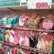 PET FOREST 各務原店へのイクラちゃんさんの投稿写真