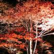 鍋平公園へのりな姫☆さんの投稿写真