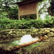 加賀野八幡神社自噴井