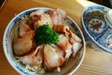 西洋飲食館 Fujii_お知らせ
