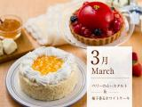 米・糀 洋菓子 MINOV_エステ、セレブランチ、スイーツ…自分にごほうび特集用写真1