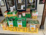 大熊青果 丸席農産物直売所のお知らせ写真
