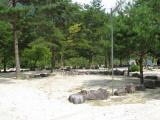 塔の岩オートキャンプ場_夏のレジャー
