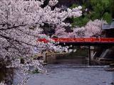 中橋の写真