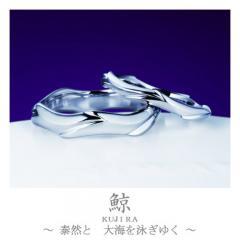 鯨~くじら~|結婚指輪「鯨(くじら)」の物語/ブログへ