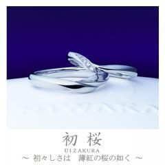 初桜~ういざくら~ 結婚指輪「初桜(ういざくら)」の物語/ブログへ