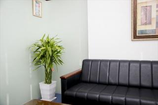 ダスキントータルグリーン(観葉植物レンタル)の写真2