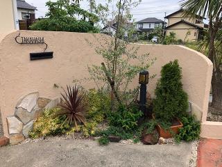 <after>鉢植えにすることで扱いやすく|樹木のある暮らしをしたいということで、壁を塗り替えるとともに、...