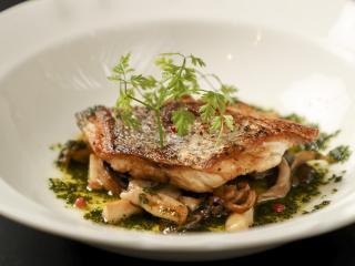 天然鯛のムニエル パセリソース|ある日のオススメからお魚料理の一例。厳選した素材を使いしっかりとした...