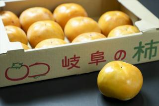 太秋柿(たいしゅうがき)ご贈答用|新品種として、近年開発された甘柿で、シャキシャキとした歯ごたえが特...