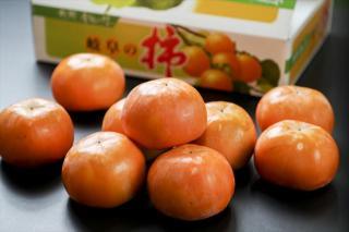 富有柿(ふゆうがき)ご贈答用|甘柿の王様という富有柿。こちらが岐阜が発祥の地といわれ古くから親しまれ...