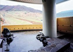 飛騨にゅうかわ温泉 すくなの湯の写真