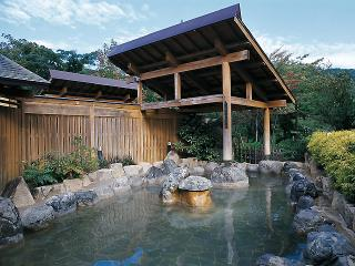湯の平温泉の写真