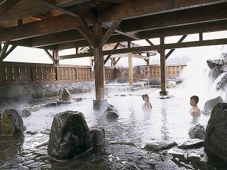 板取川温泉バーデェハウスの写真