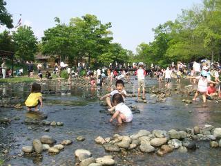 河川環境楽園 自然発見館の写真