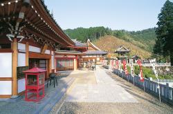 大龍寺の写真