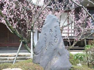 芭蕉句碑(妙照寺)の写真