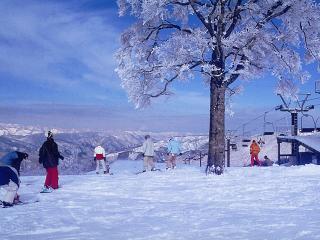 スターシュプール緑風リゾートひだ流葉スキー場の写真