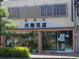 川惣花店 フルール店の写真