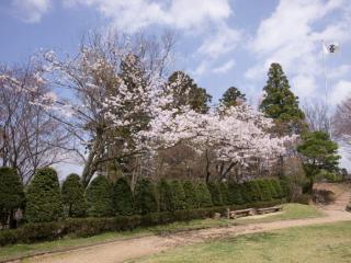 城山公園の写真