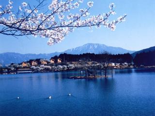 椛の湖の写真