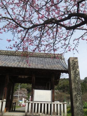 ジェミニさんによる願成寺のクチコミ写真