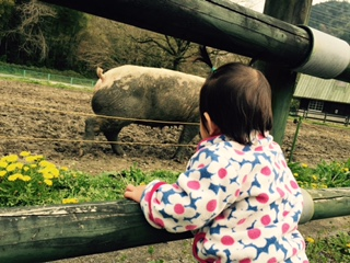 うさこさんによる岐阜市畜産センター公園のクチコミ写真